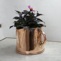 Two Handled Jug - picture 1