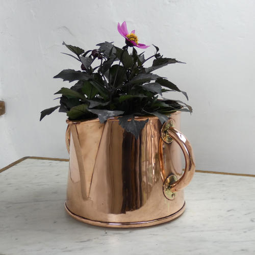 Two Handled Jug