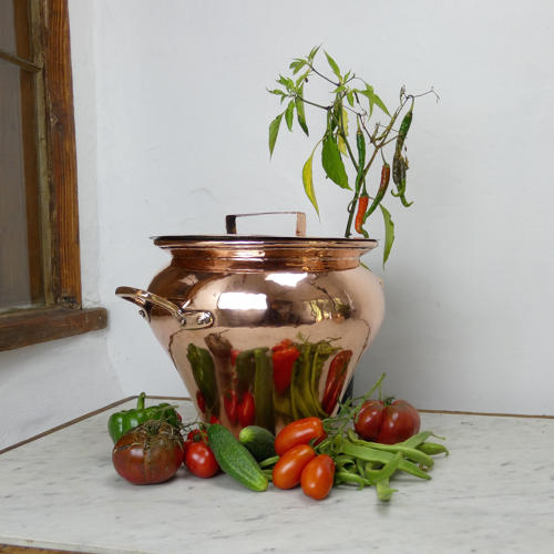 Fabulous Shaped Copper Pot