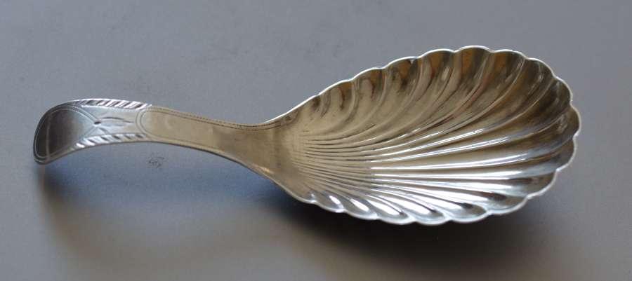 Attractive Silver Caddy Spoon by Thomas Willmore, Birmingham 1800