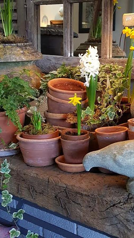 Vintage hand thrown terracotta garden pots