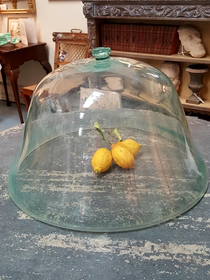 19th C French Glass Melon Cloche