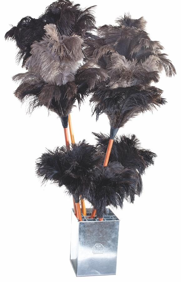 Feather Dusters