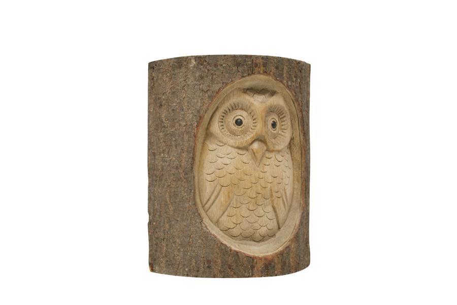Half Log Owl