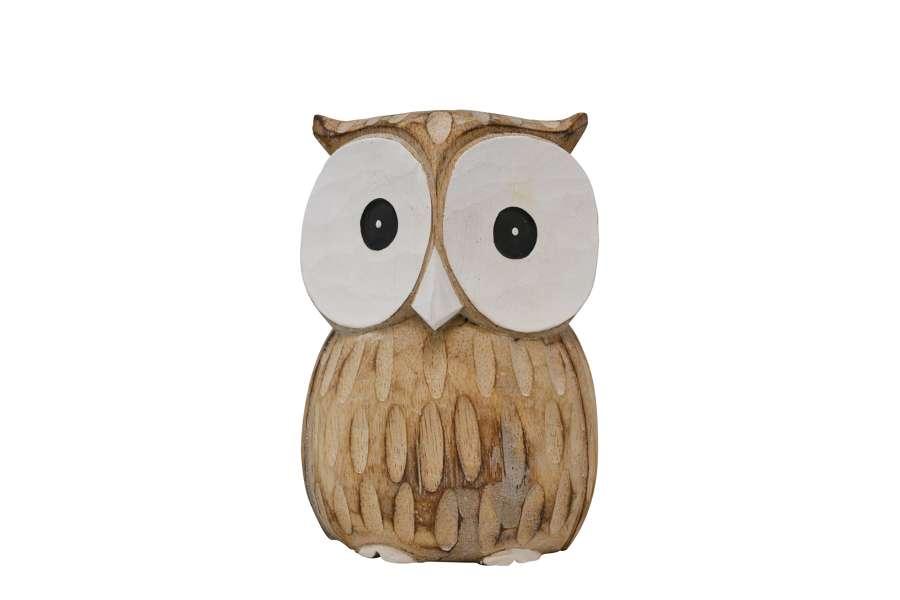 Big White Eyes Owl