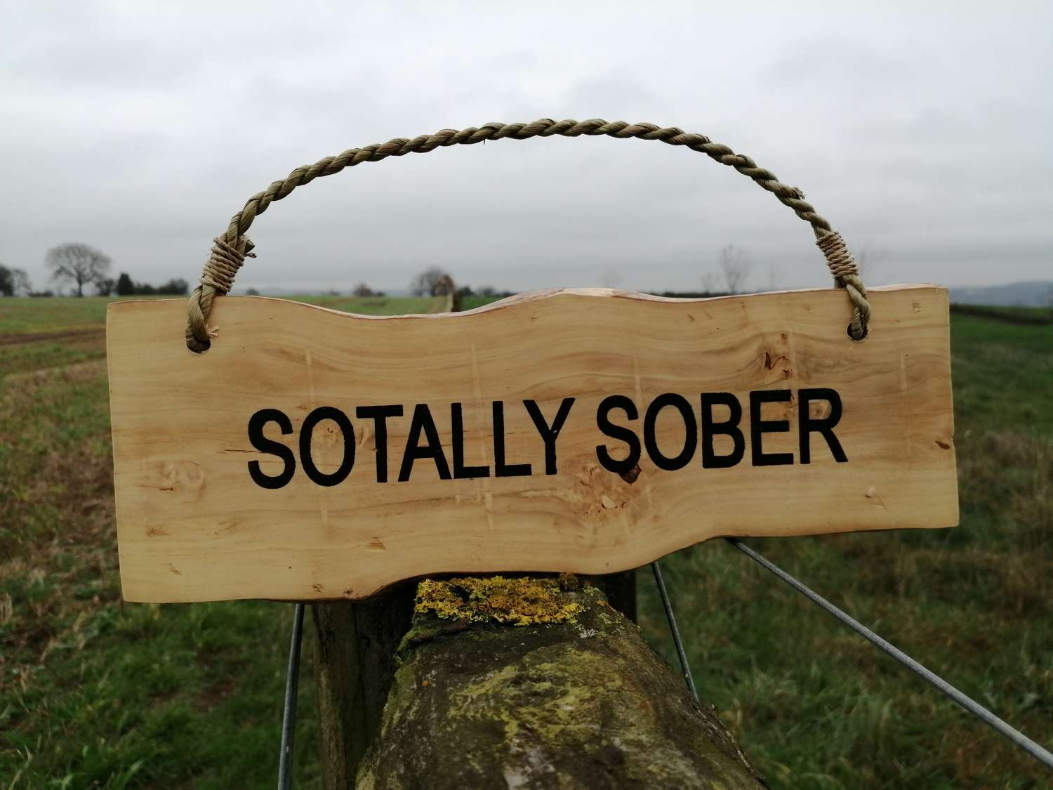 Sotally Sober Coffee Wood Plaque