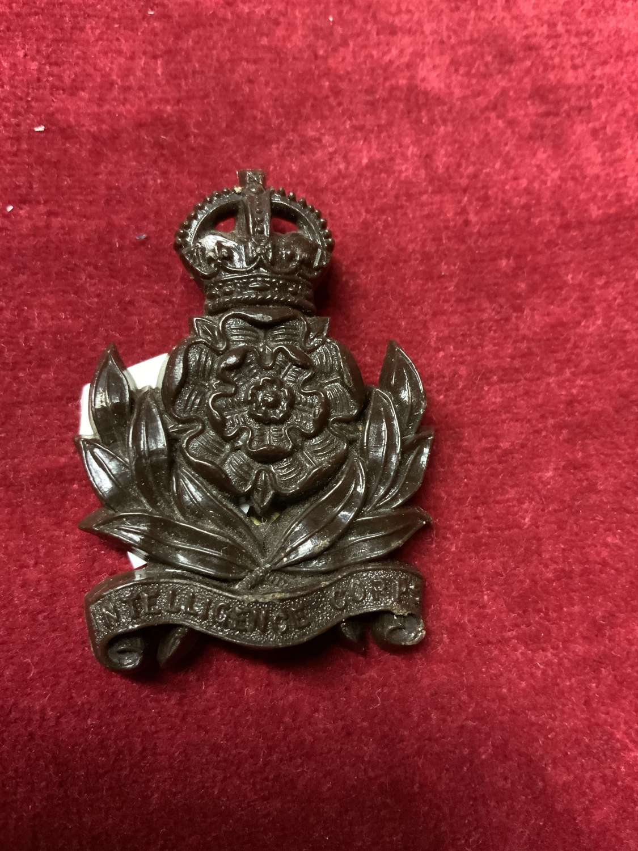 Intelligence Corps, Plastic Cap Badge