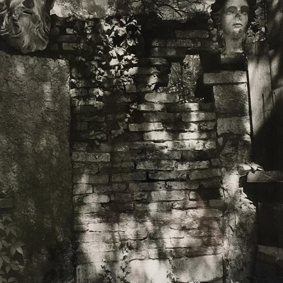 Simon Marsden. Stone Heads, Venice