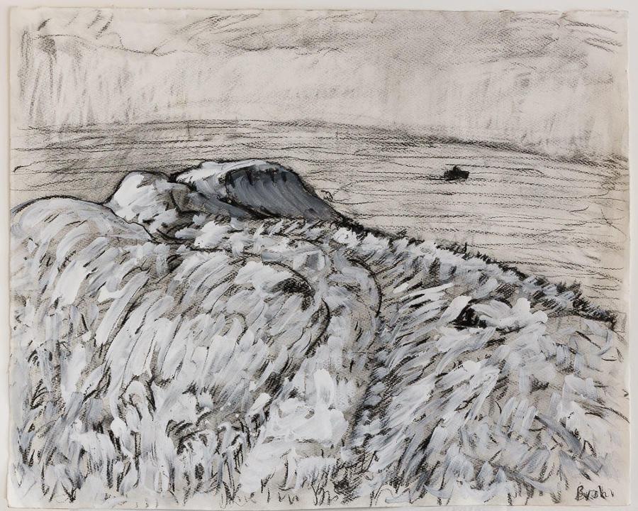 Nick Bush. Beachy Head