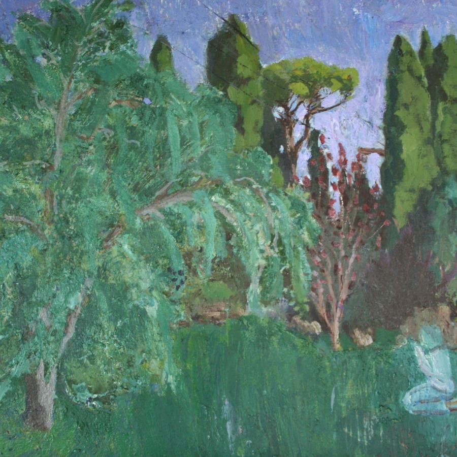 Nick Bush. Boy in the olive grove.