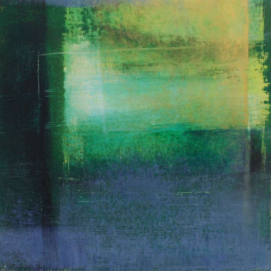 Michele Griffiths. Looking for light.