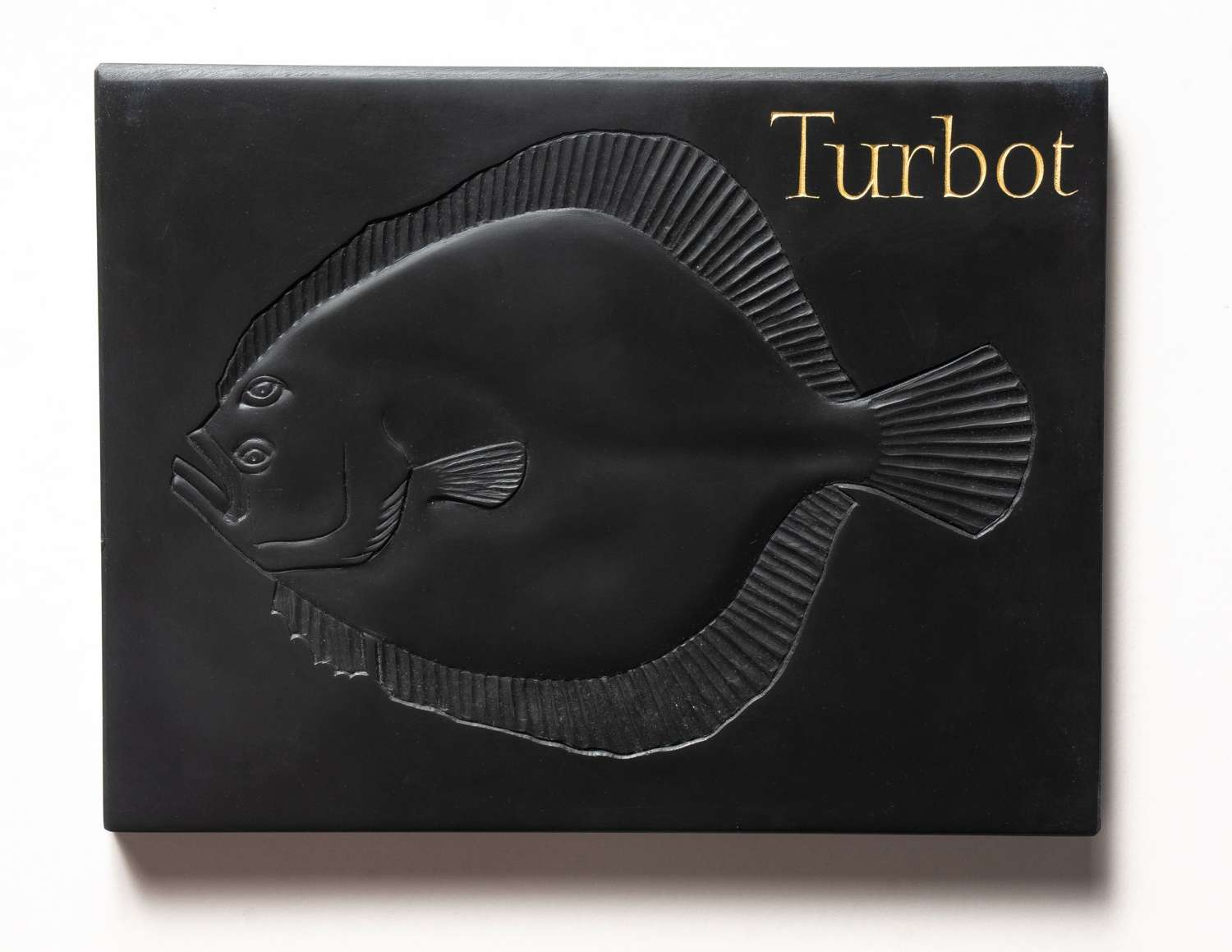 Tracy Steel. A Turbot.