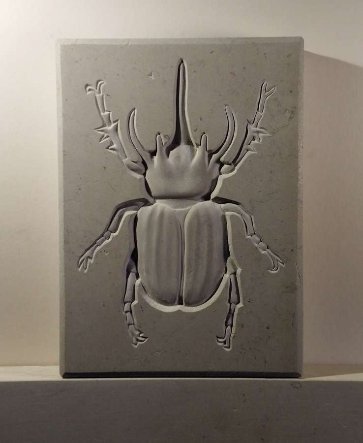 Tracy Steel. Rhino Beetle.