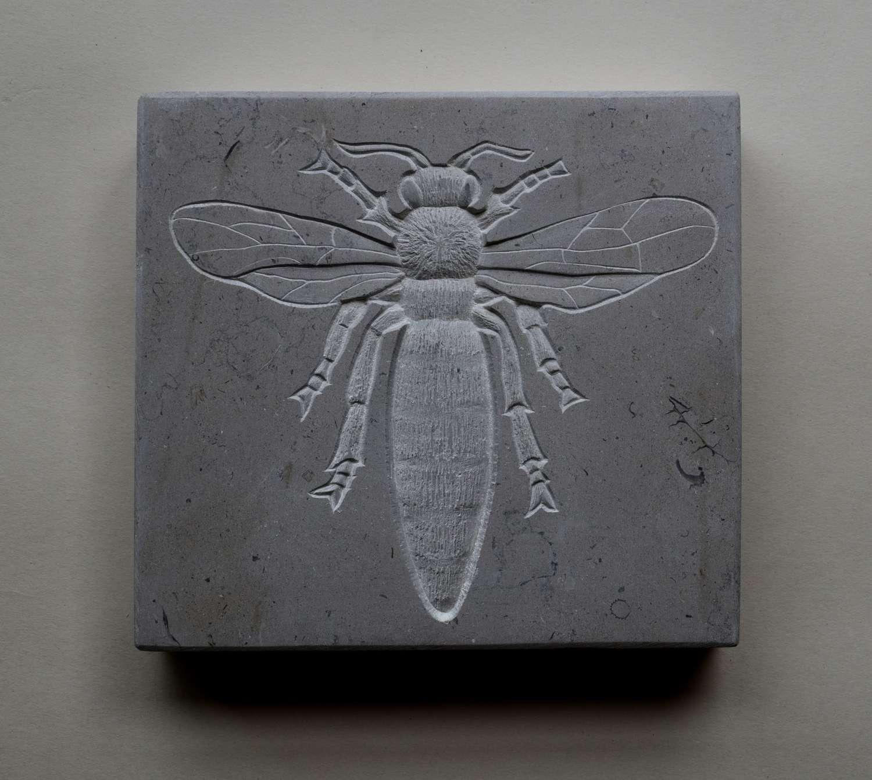 Tracy Steel. Queen Bee.