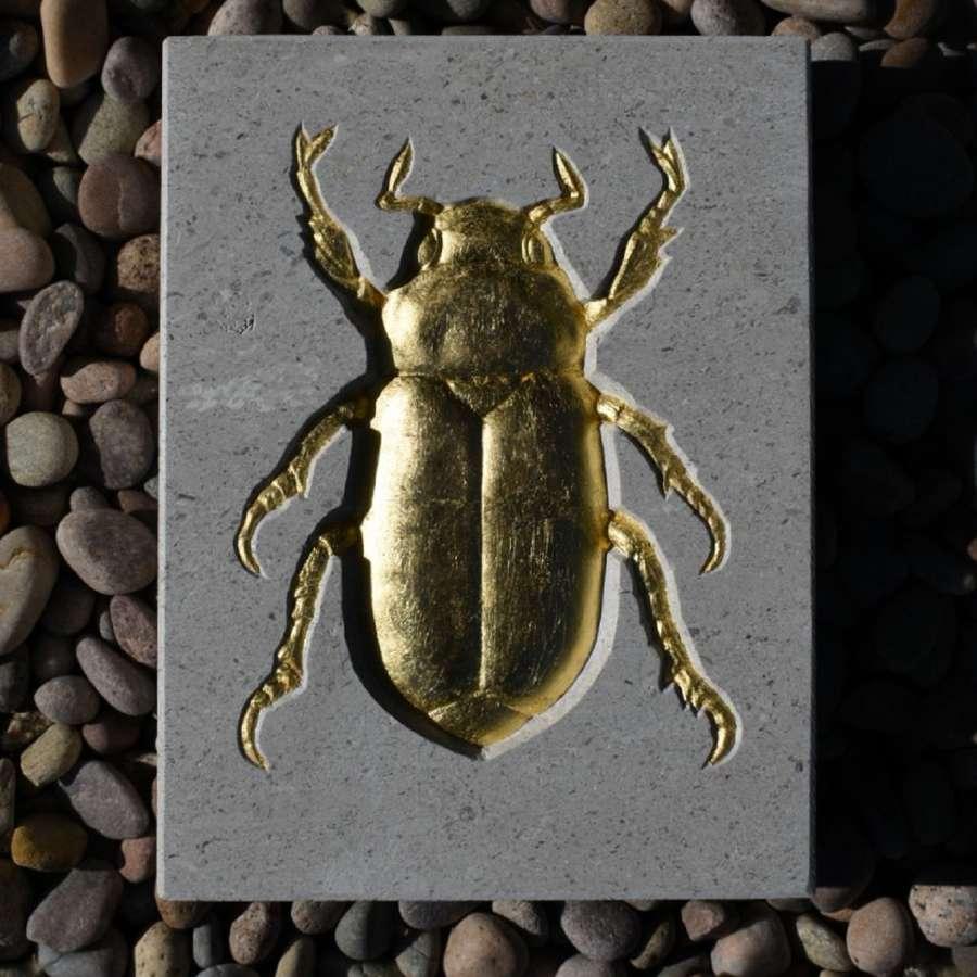 Tracy Steel. Jewel Beetle