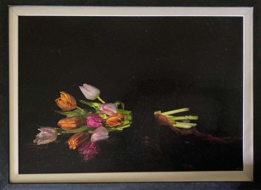 Alexander James. Tulips.